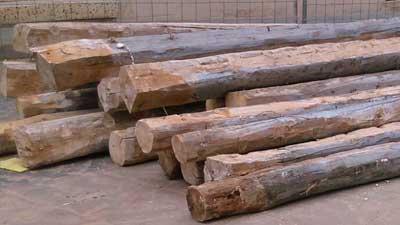 adoquin de madera